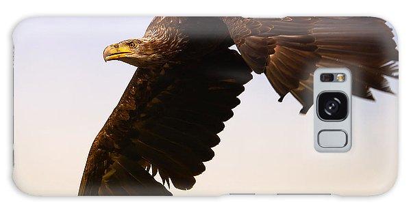 Eagle In Flight Galaxy Case by Nick  Biemans