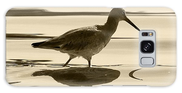 Early Morning In The Moss Landing Harbor Picture Of A Willet Galaxy Case by Artist and Photographer Laura Wrede