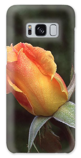 Early Morning Rosebud Galaxy Case