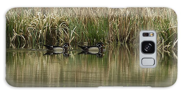 Early Morning Wood Ducks Galaxy Case