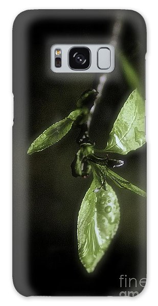 Early Spring Leaves Galaxy Case