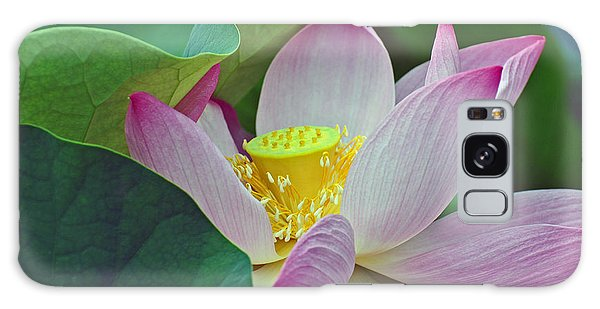 East Indian Lotus Galaxy Case