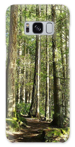 East Sooke Park Trail Galaxy Case