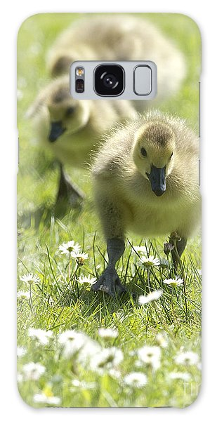 Gosling Galaxy Case - Easter Chicks by Sharon Talson