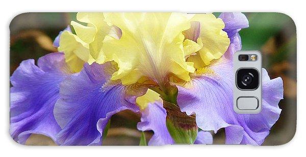 Easter Iris Galaxy Case by Jeanette Oberholtzer