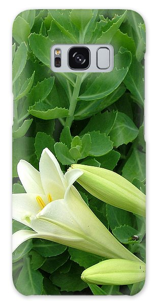 Easter Lily Galaxy Case by Natasha Denger
