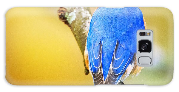 Eastern Blue Bird Of Spring Galaxy Case