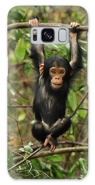Eastern Chimpanzee Baby Hanging Galaxy Case