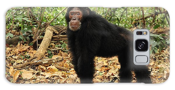 Eastern Chimpanzee Gombe Stream Np Galaxy Case