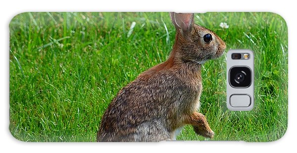 Eastern Cottontail Galaxy Case