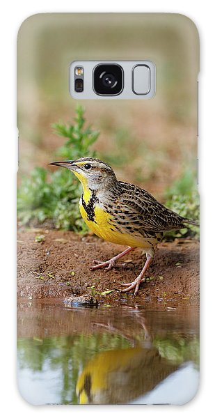 Meadowlark Galaxy Case - Eastern Meadowlark (sturnella Magna by Larry Ditto