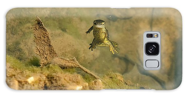 Newts Galaxy Case - Eastern Newt In A Shallow Pool Of Water by Chris Flees