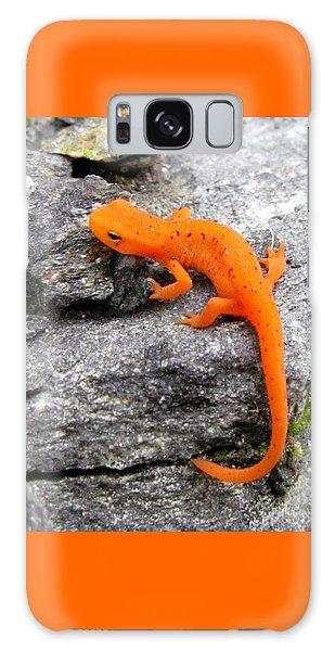 Orange Julius The Eastern Newt Galaxy Case
