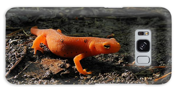 Eastern Newt Red Eft Galaxy S8 Case