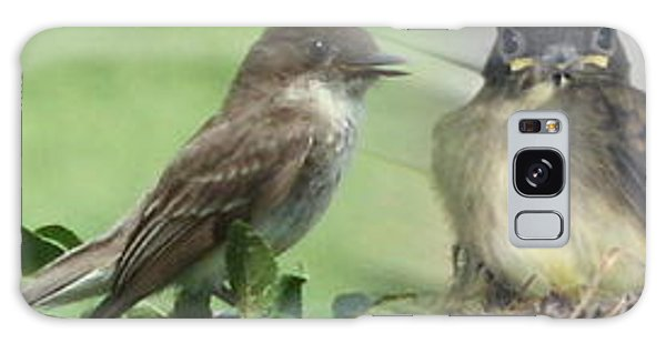 Eastern Phoebe Family Galaxy Case