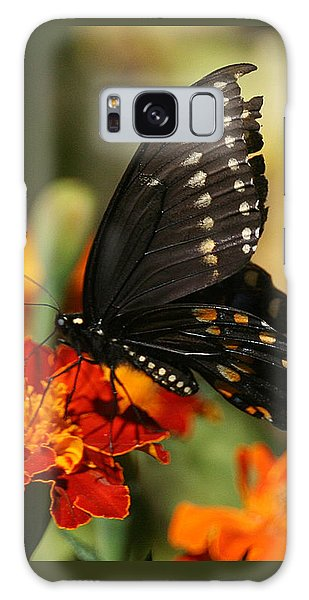 Eastern Swallowtail On Marigold Galaxy Case