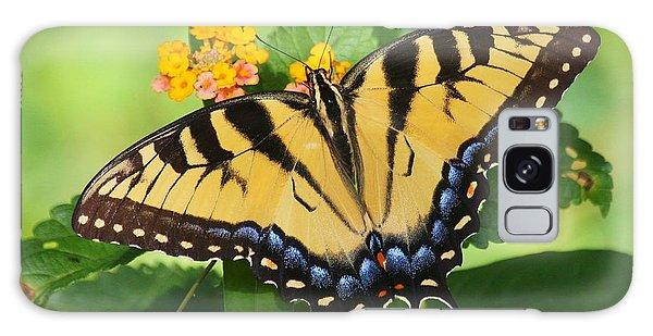 Eastern Tiger Swallowtail Butterfly Galaxy Case by Myrna Bradshaw