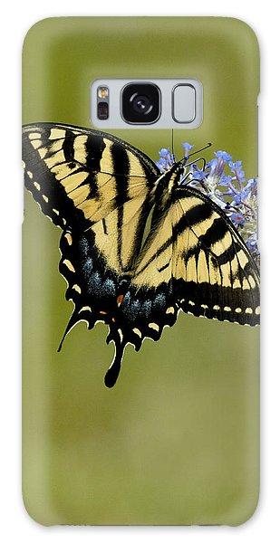 Eastern Tiger Swallowtail On Butterfly Bush Galaxy Case
