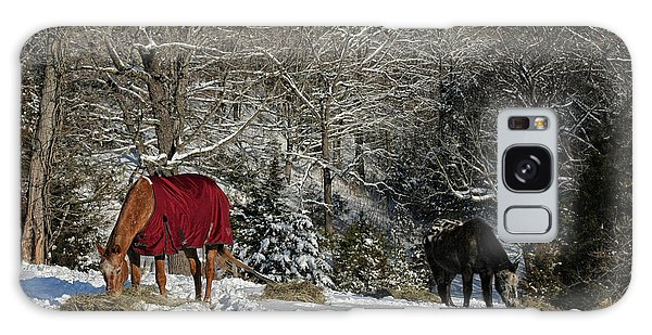 Eating Hay In The Snow Galaxy Case by Denise Romano
