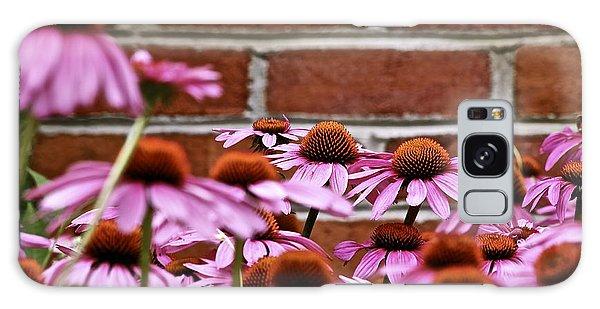 Echinacea And Brick Wall Galaxy Case