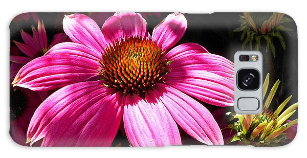 Echinacea Blooms Galaxy Case