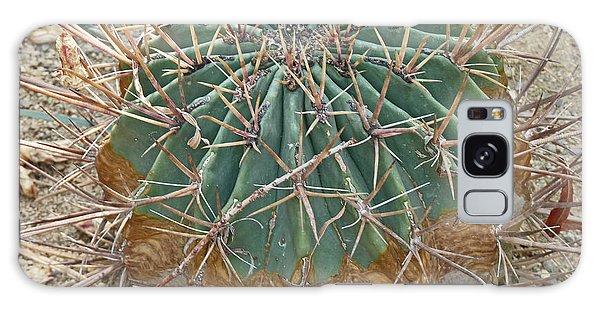 Echino-cactus Like A Ball Galaxy Case