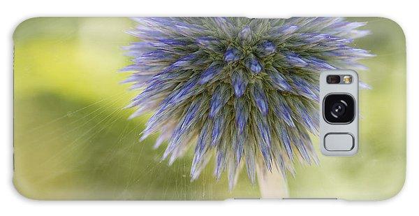 Echinops Blue Galaxy Case