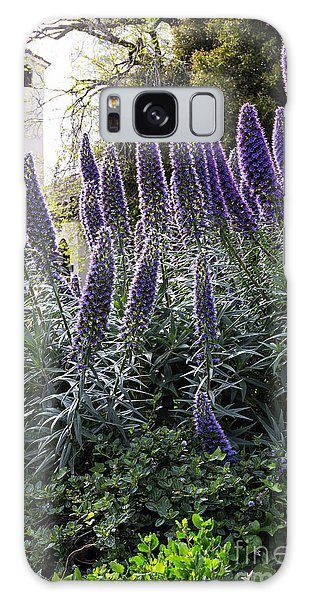 Echium And Tower Galaxy Case