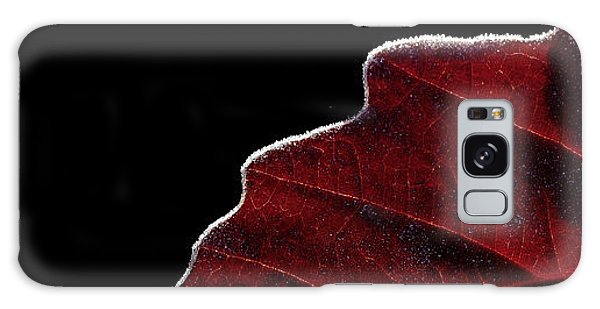 Edge Of Autumn Galaxy Case by Steven Milner