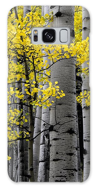 Edge Of Night Galaxy Case by The Forests Edge Photography - Diane Sandoval