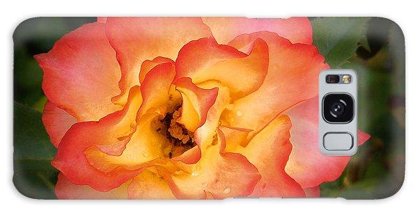 Effulgent Rose Galaxy Case