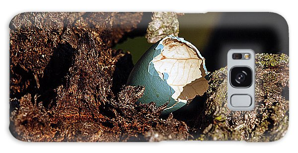 Eggs Of Nature 1 Galaxy Case by David Lester