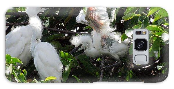 Egret Chicks Galaxy Case by Ron Davidson