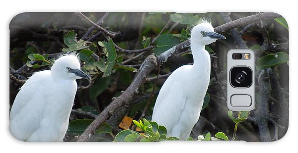 Egret Chicks Waiting To Be Fed Galaxy Case by Ron Davidson