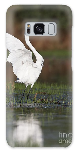 Egret Dancing Galaxy Case