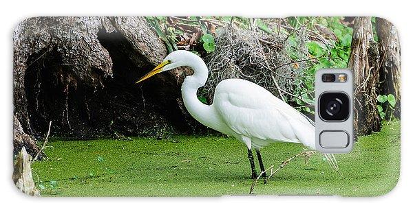 Egret Fishing Galaxy Case