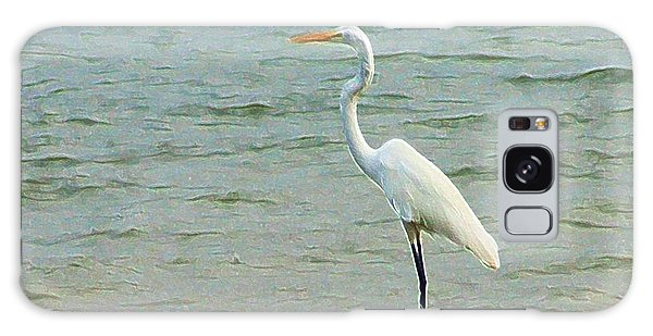 Egret In The Shallows Galaxy Case