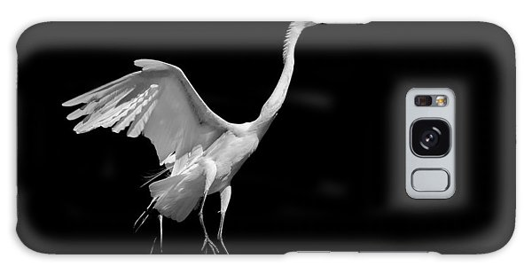 Egret On Black Galaxy Case