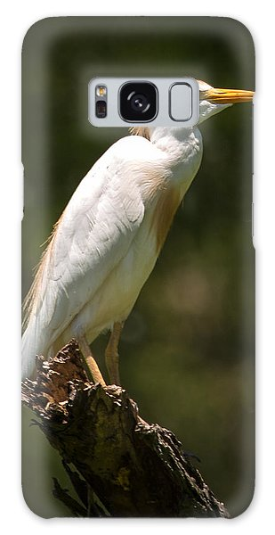 Cattle Egret Perched On Dead Branch Galaxy Case
