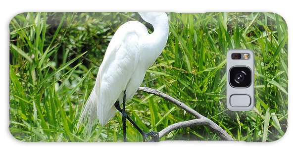 Egret Perching On Branch Galaxy Case by Dan Williams