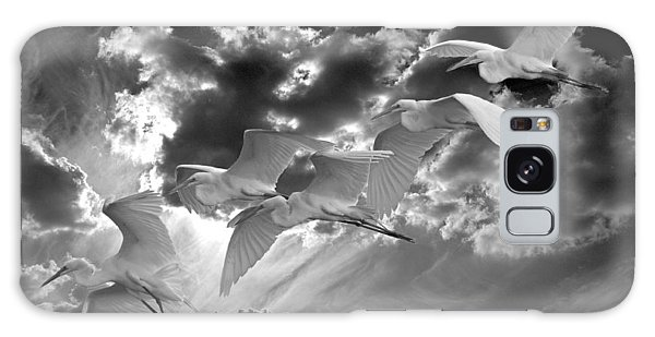 Egrets In Succession Bw Galaxy Case