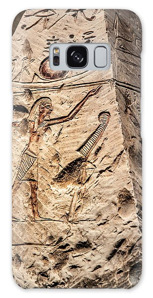 Egyptian Exhibit-3 Galaxy Case