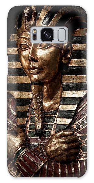 Egyptian Exhibit-5 Galaxy Case