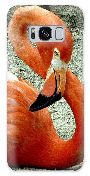 Figure Eight Flamingo Galaxy Case