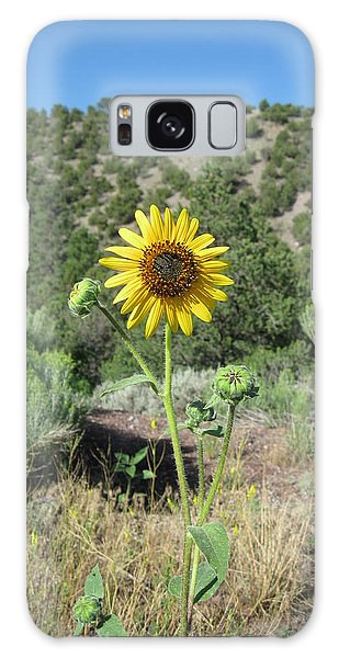 Elated Sunflower Galaxy Case