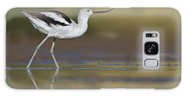 Elegant Avocet Galaxy Case