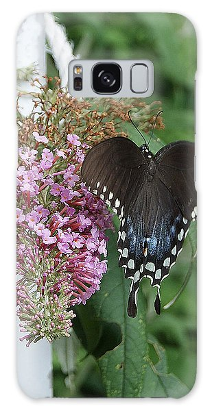 Elegant Swallowtail Butterfly Galaxy Case
