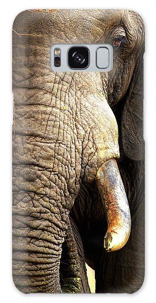 Elephant Close-up Portrait Galaxy Case