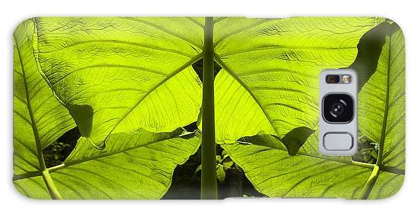 Elephant Ear Leaves In The Rainforest Galaxy Case