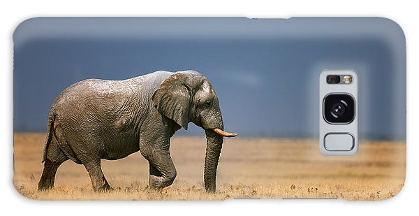 Bass Galaxy S8 Case - Elephant In Grassfield by Johan Swanepoel